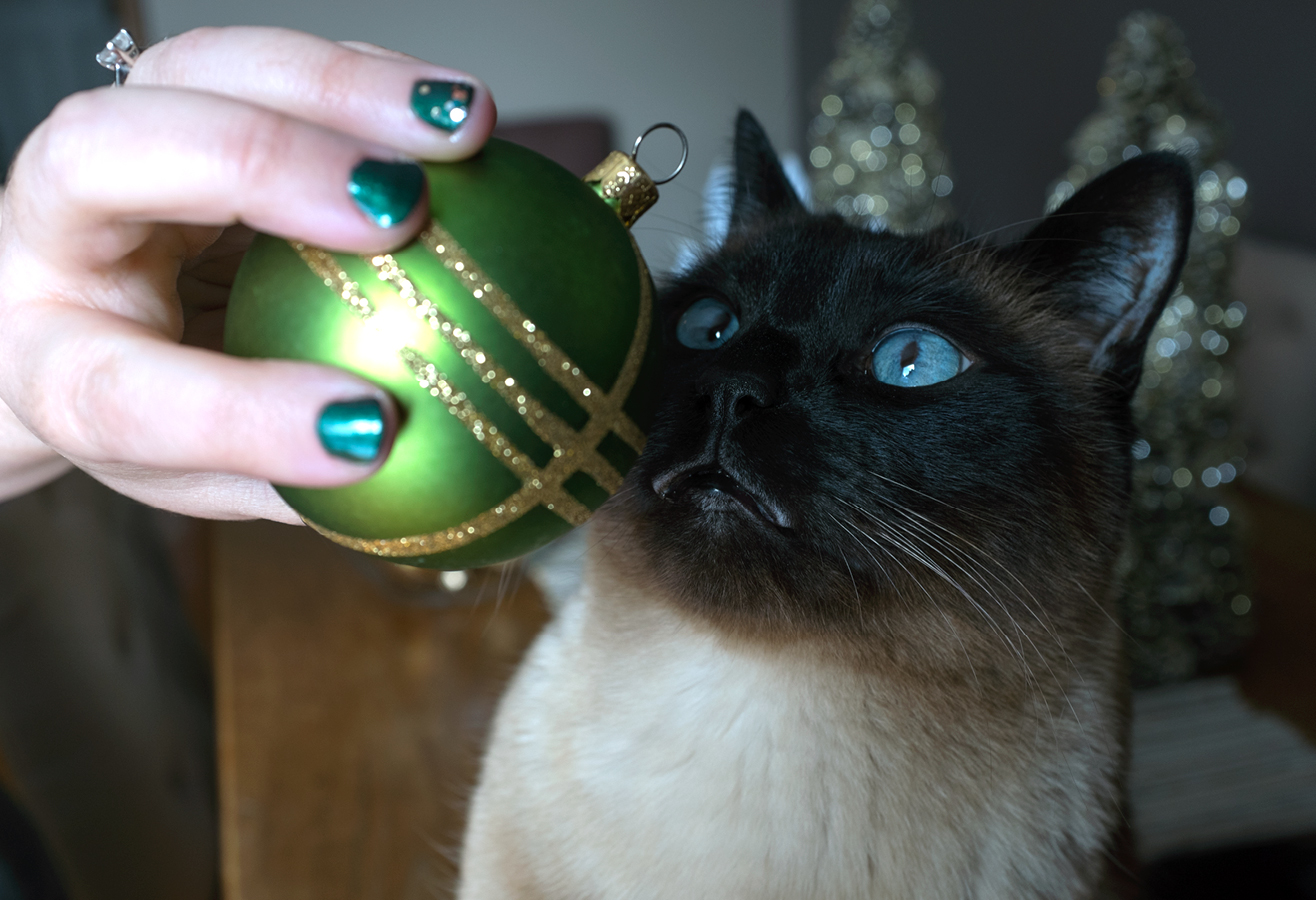 holidaynails_storyimages@2x2